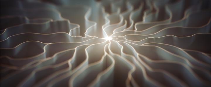 Take A Holistic Approach Neuron